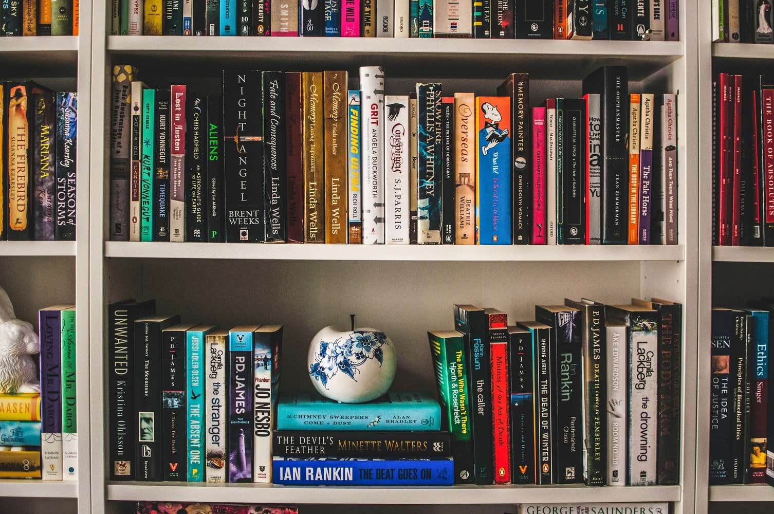 bookshelf zoom background